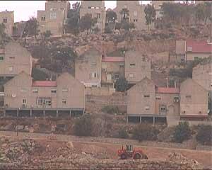 Una excavadora israelí trabaja en los terrenos confiscados. (Foto: S. E.)