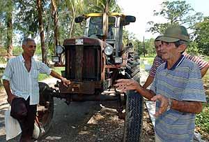 Un grupo de campesinos pide tierras ociosas en usufructo para ponerlas a producir. (Foto: EFE)
