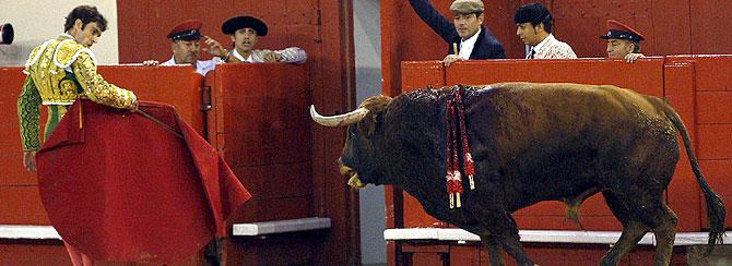 El diestro José Tomas acompaña a los toriles a su segundo toro indultado, en la Monumental de Barcelona. (EFE)