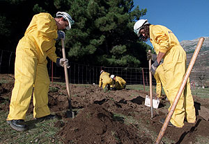 Trabajos de reforestación en La Pedriza del Manzanares, Madrid, en 2001. (Foto: Diego Sinova)