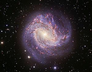 Imagen de la galaxia espiral Messier 83, tomada desde el Observatorio del Sur de Chile en septiembre de 2008. La galaxia, localizada a 15 millones de años luz de la nuestra, tiene una estructura parecida pero la mitad de tamaño. (Foto: AFP)