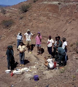 Excavaciones en Mendoza. (Foto: REUTERS)