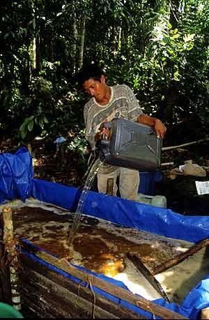 Proceso de transformación de la hoja de coca. (Foto: WALTER SILVERA)