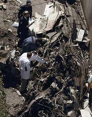 Restos de la avioneta accidentada. (Foto: EFE)