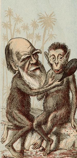 Caricatura de Darwin publicada por una revista británica en 1974. (Foto: Mary Evans Picture Library)