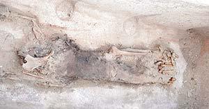 Los restos de la momia. (Foto: EFE)