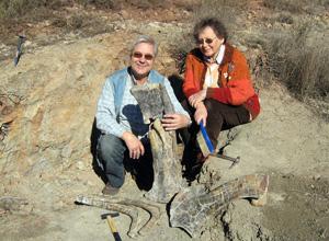 Un Yacimiento Soriano Recupera Los Primeros Restos En España De Un Dinosaurio Ornitópodo Elmundo Es