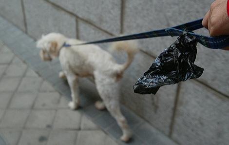 Una persona pasea a su perro con una bolsa para recoger sus excrementos. (Foto: Antonio Heredia)