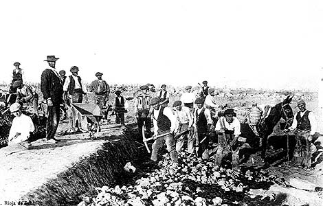 Una cuadrilla de obreros descubre una calle a pico y pala en las ruinas de Numancia. (Foto: Archivo Provincial de Soria)