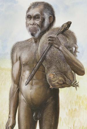 'Homo floresiensis'. | Peter Schouten / AFP