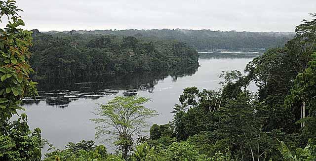 El río Ogouwe, rodeado de selva virgen en Gabón. | Efe