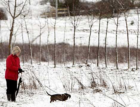 Una persona pasea con su perro sobre la nieve en Vitoria   Efe