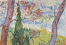 'Jardín del Hospital Saint Paul', de Van Gogh.