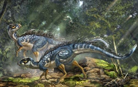 Recreación de un 'Tianyulong confuciusi'm, un dinosaurio con plumas encontrado en China. / Nature