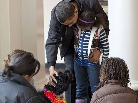 Obama acaricia a 'Bo' en presencia de su familia.   Reuters