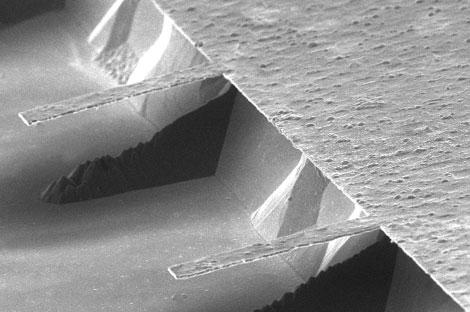 Imagen microscópica de las micropalancas de la 'nariz electrónica'. | Universidad de Zaragoza