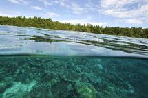 Bukanen Island, Manado, Indonesia. | Afp