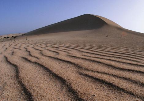 Dunas de Corrajeo, al norte de Fuerteventura. (Foto: G. C. D.)