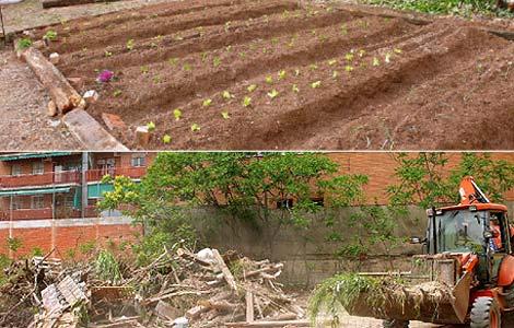 Arriba, una imagen del huerto vecinal; abajo la excavadora destrozándolo. (N. Navarro)