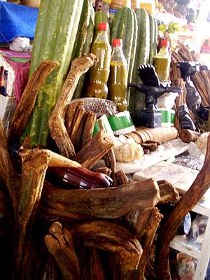 Venta de 'San Pedro' y ayahuasca en el mercado central de Cuzco.   W. Fernández