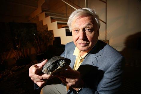 David Attenborough, durante una reciente visita a Madrid. / Kike Para