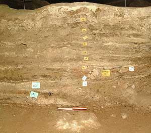 Fotografía de un corte trasversal del suelo de la cueva de Yuchanyan donde se pueden ver los diferentes estratos o capas. | PNAS