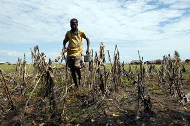 Niño en los campos de maíz arrasados por el agua, en la aldeda de Liyoyelo (Zambia): / Intermon Oxfam