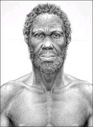 Ilustración del llamado hombre de Herto.