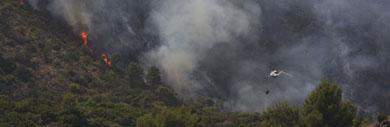 Imagen del incendio originado el martes en Marbella. | Efe