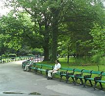 Un parque de la capital.