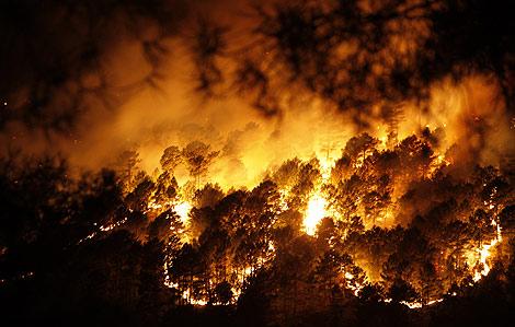 Una de las estampas que dejó el incendio que ha quemado más de 4.000 hectáreas.   R. Muñoz