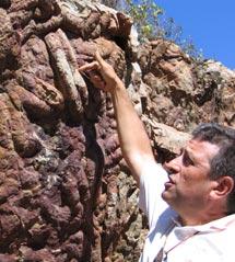 Huellas de trilotibes (crucianas) en Cabañeros.l |R.M.T.