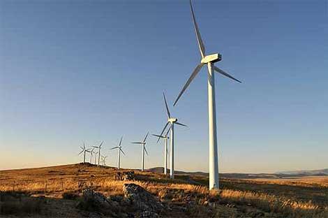 Un parque eólico en Cadiz. | SINC.