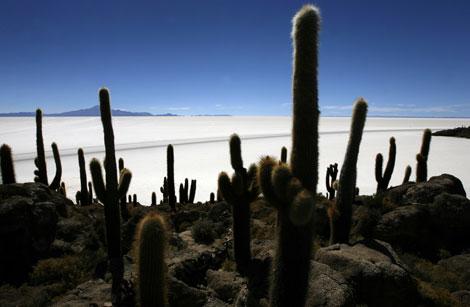 El Salar de Uyuni, en los Andes bolivianos. | Reuters