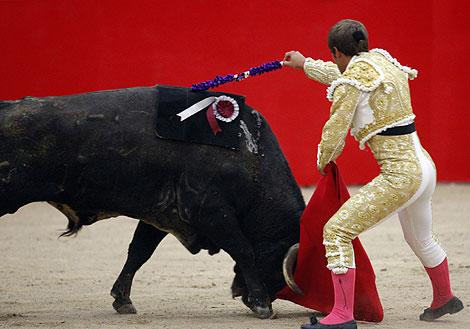 Las banderillas se adhieren al toro con velcro para que no haya sangre. | Reuters