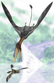 Recreación artística del 'Darwinopterus'.   Royal Society