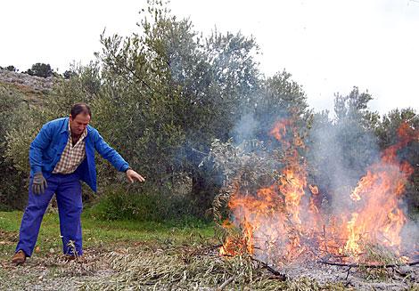 Un trabajador agrícola quemando ramones de olivo tras la recolección. | Manuel Cuevas
