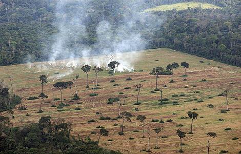 Quema de terrenos para acondicionarlos para el cultivo de soja cerca de Santarem, en Brasil. | Foto: Asociación Trujillo 2011