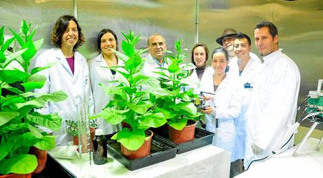 Miembros del Grupo de Biología de la UIB.   Alberto Vera
