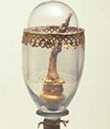 Uno de los dedos de Galileo conservados en Italia.
