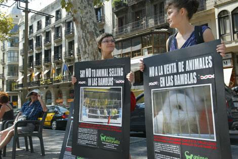 Activistas protestando por la venta de pájaros. |D. Umbert