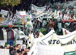 Manifestación de agricultores y ganaderos en Madrid. | Ical