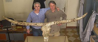 Martínez-Navarro y Landucci, junto al cráneo hallado.