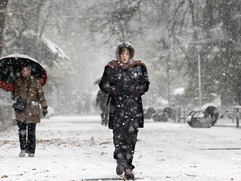 Intensa nevada en Vitoria.   Efe
