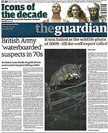 Portada de 'The Guardian', con la foto del lobo.
