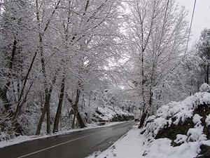 Nieve en las proximidades de Alcoy. | D. Moltó
