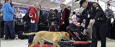 Medidas de seguridad en el aeropuerto de Detroit.   Afp