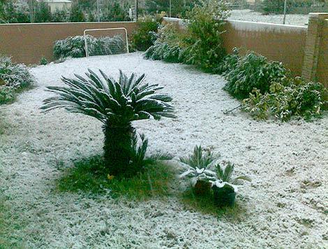 Nieve en el jardín de una vivienda de Valencia | C.C.