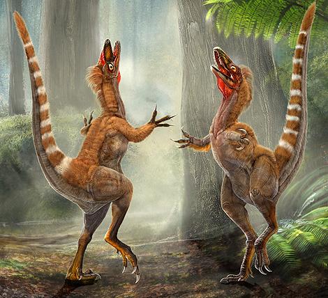 Reconstrucción del dinosaurio 'Sinosauropteryx'. | Chuang Zhao y Lida Xing