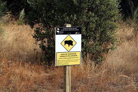 Señal de advertencia sobre la instalación de trampas en Las Rozas. | Ricardo Fanjul